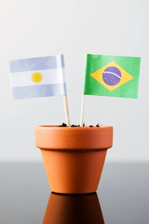 flags of argentina and brazil in a plant pot