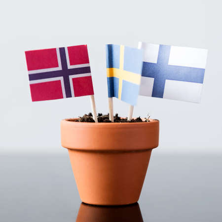 flags of finland, sweden and norway in a plant pot, concept scandinavia