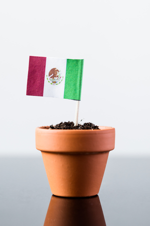 economy growth: flag of mexico in a plant pot, concept economy growth Stock Photo