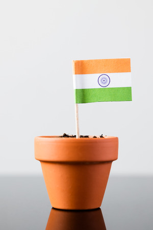 population growth: flag of india in a plant pot, concept economy growth