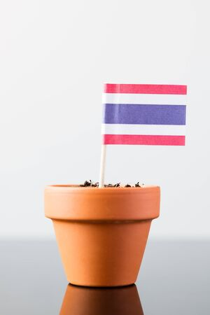 population growth: flag of thailand in a plant pot, concept economy growth