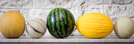 panorama with different melons in front of a stone wall Stock Photo