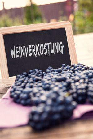 wineries: lots of black grapes and Slate with german Word Weinverkostung on it, which means Wine tasting