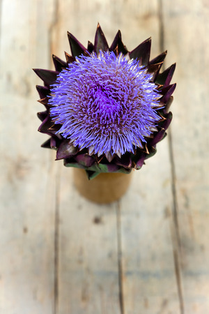 cardunculus scolymus: artichoke on a wooden table, topview with copyspace