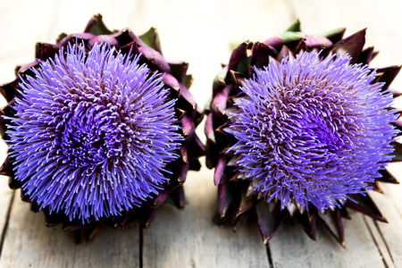 cardunculus scolymus: two artichokes on a wooden table, topview with copyspace, horizontal Stock Photo