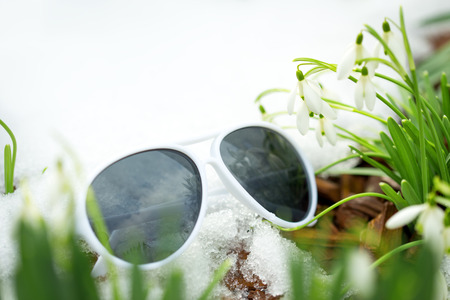 sun glasses: Galanthus nivalis between snow and white sunglasses, concept spring beginning