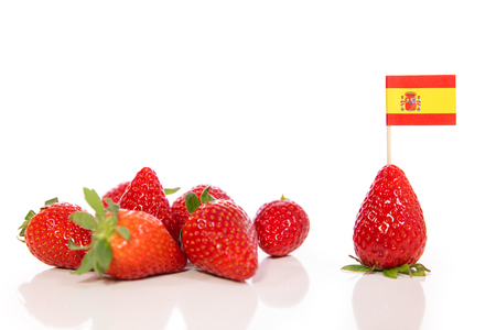 Cultivation and growing in Spain, Strawberries isolated on white, copyspace