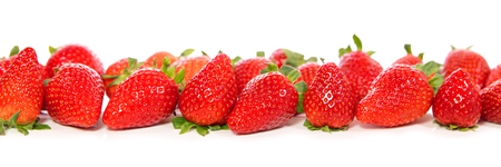 Strawberries isolated on white background with reflections, panorama
