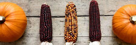 cuerno de la abundancia: mazorca de maíz y calabazas en la mesa de madera vieja, panorama