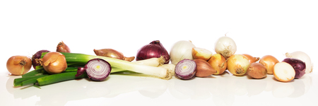 panorama with various onions in front of white background