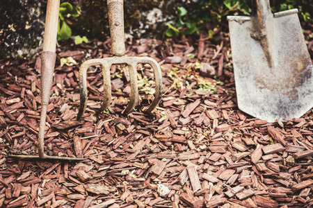 Old an dirty gardening tools or garden equipments standing on the bark mulch ground