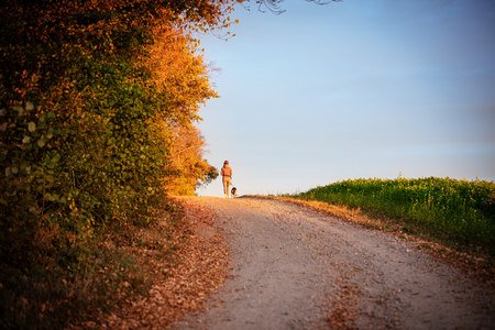 Walk with the dog, woman and her pet walking through a autumn landscape, copyspace Stock Photo