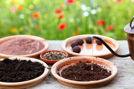 manufacturing of seed balls or seed bombs on a wooden table, flower field as background