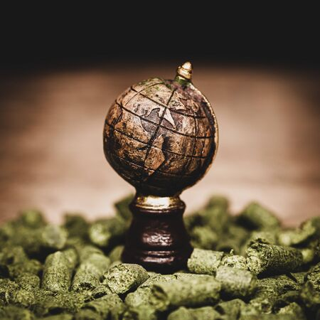 globe on dried green hop pellets, ingredient for brewing beer in a brewery, beer plant and manufacture, square Stock Photo