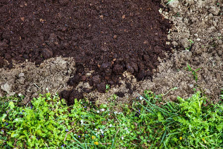 Background with fresh digged soil on a field, compost and humus on it, some grass of a meadow at the bottom Stock Photo