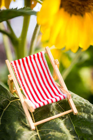 a miniature deckchair red white striped with a sunflower in the background, concept holiday and vacation
