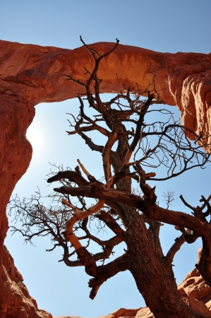 arches national park: Arches National Park, UT Stock Photo
