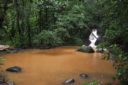 volcano slope: Small pond on the Souffriere volcano slope, Guadeloupe, French Antilles