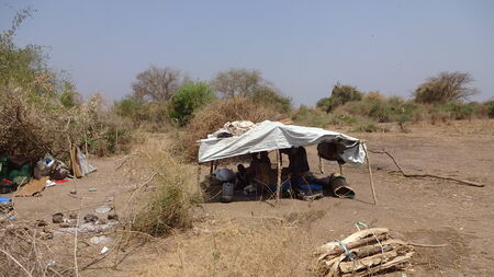 humanitarian aid: Families and people are living here under some roof made of a piece of plastic sheet, Mingkama  mingkaman , Awerial, Lakes state, South Sudan