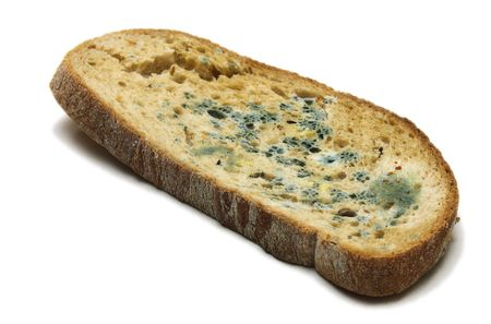 scabrous: Mouldy bread Stock Photo