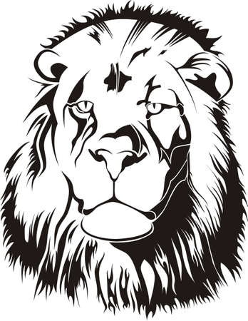Lionhead Tribiales Stock Vector - 12802726