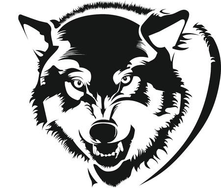 늑대: 늑대의 얼굴 일러스트