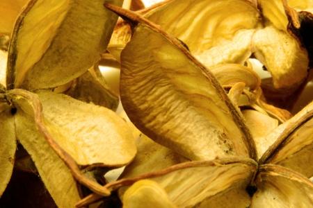 aromatischen trockenen Tee mit Früchten und Blüten