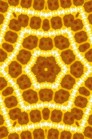 Kaleidoscope Yellow and Brown Star