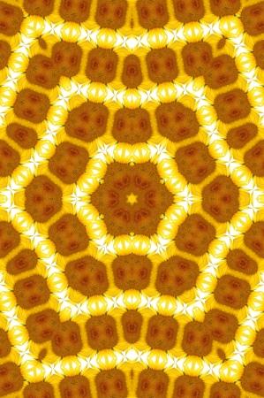 Kaleidoskop-Gelb und Brown-Stern Lizenzfreie Bilder