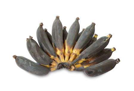 Rotten bananas isolated on white background Stock Photo