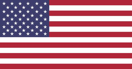 usa national country flag correct size color vector