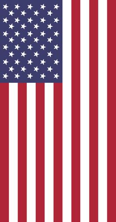 usa national vertical flag correct size color vector