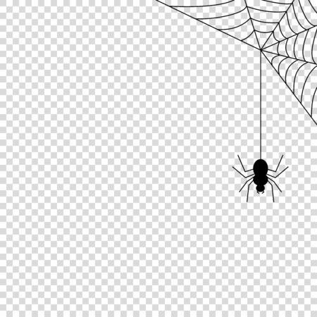 Spider web icon mock up vector illustration isolated