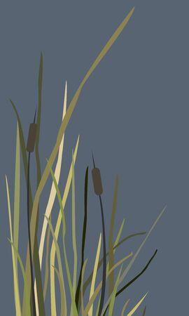 Bush of Swamp Reed on a Lake. vector Illustration Иллюстрация