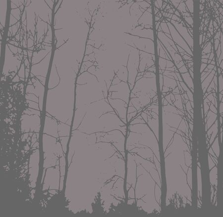 Silhouettes of Trees on subtle background. Tree Pattern. Vector illustration Illustration