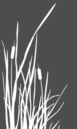 Bush of Swamp Reed on a Lake. vector Illustration