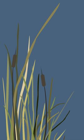 Bush of Swamp Reed on a Lake. vector Illustration Vectores