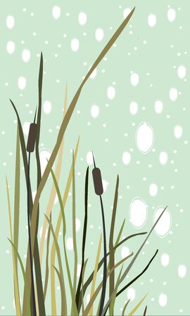 Bush of Swamp Reed on a Lake. vector Illustration Illustration