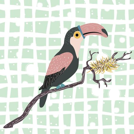 Cute hand drawn toucan bird. Vector Illustration