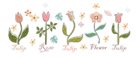 Beautiful Set With Hand Drawn Flowers. Elegant Hand Drawn Design. Scandinavian Style. Vector Illustration Ilustracja