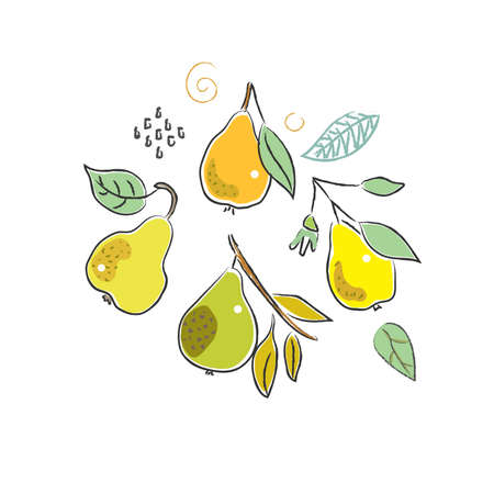 Cute Winter Icon with pears. Hand Drawn Scandinavian Style. Vector Illustration