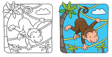 cartoon character of little funny monkey on lians near the palm  Children illustration for coloring book Vector