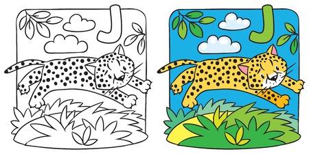 Little cheetah or jaguar coloring book. Alphabet J Vector