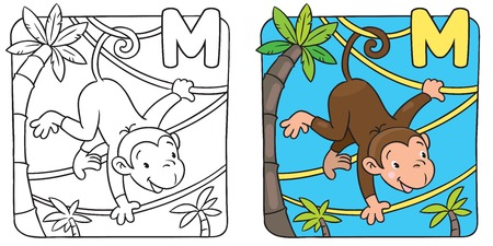 Coloring book of funny monkey on lians. Alphabet M Vector