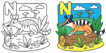 Little numbat coloring book. Alphabet N Vector