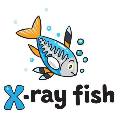 x xray: X-ray fish for ABC. Alphabet X