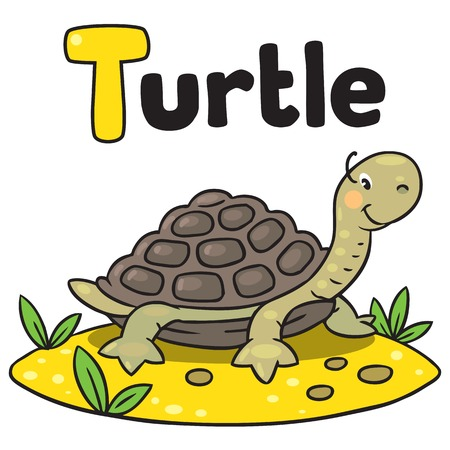 Little funny turtle, for ABC. Alphabet T Vector