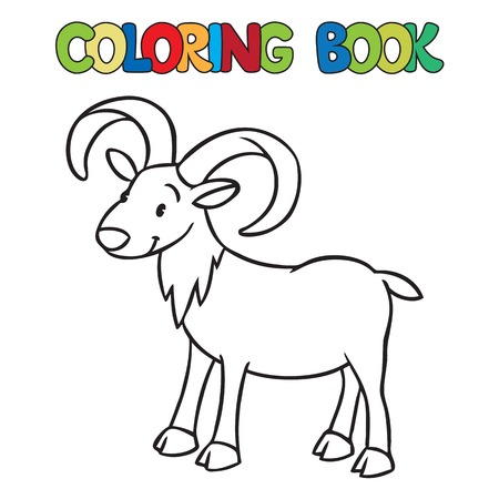 bighorn: Coloring book or coloring picture of funny wild urial or ram.