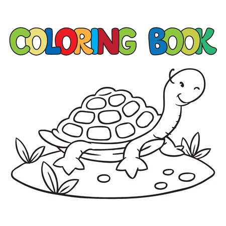 amphibian: Coloring book or coloring picture of little funny turtle on the sand