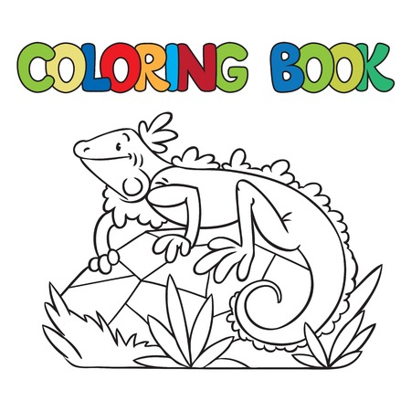 little rock: Coloring book or coloring picture of little funny iguana on rock